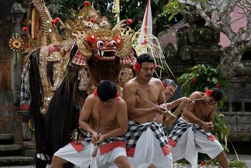 Bali Ubud Half Day Tour - Link to Page 030317