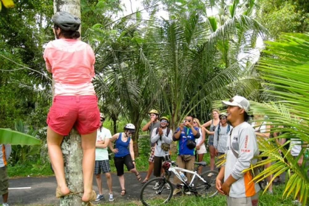 Bali Kintamani Downhill Cycling Tour - Gallery 0505171