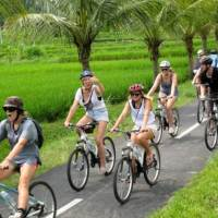 Bali Kintamani Downhill Cycling Tour