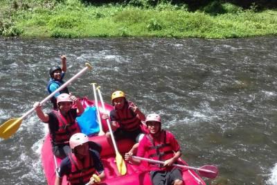 Bali White Water Rafting Tours Telaga Waja River - Gallery 18010217