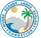 logo-role-foundation