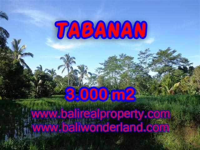 Property sale in Bali, Beautiful land in Tabanan for sale – TJTB110