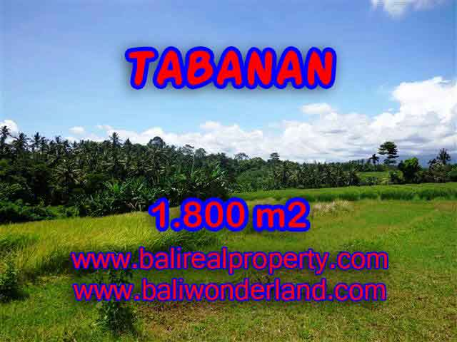 Beautiful Property for sale in Bali, land for sale in Tabanan  – TJTB106