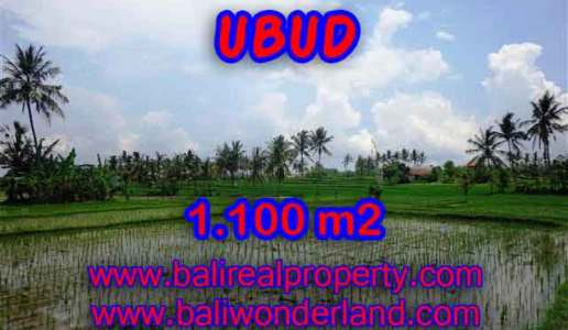 Exotic Property for sale in Bali, LAND FOR SALE IN UBUD Bali – TJUB376