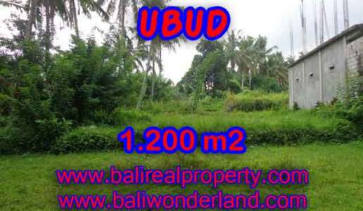 Land in Ubud Bali for sale, Outstanding view in Ubud Center – TJUB399