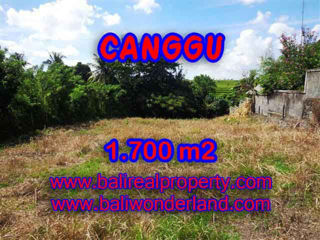 Land in Bali for sale, fantastic view in Canggu Bali – TJCG143