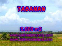 Land in Tabanan for sale, Attractive view in Tabanan Selemadeg Bali – TJTB124