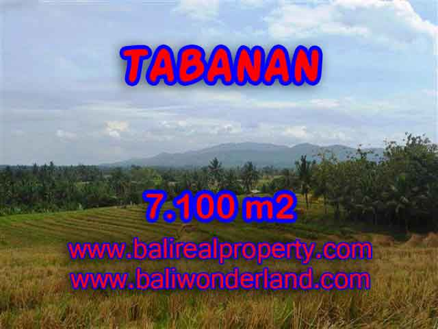 Fantastic Land for sale in Tabanan Bali, paddy fields, mountain and ocean view in Tabanan Selemadeg – TJTB125