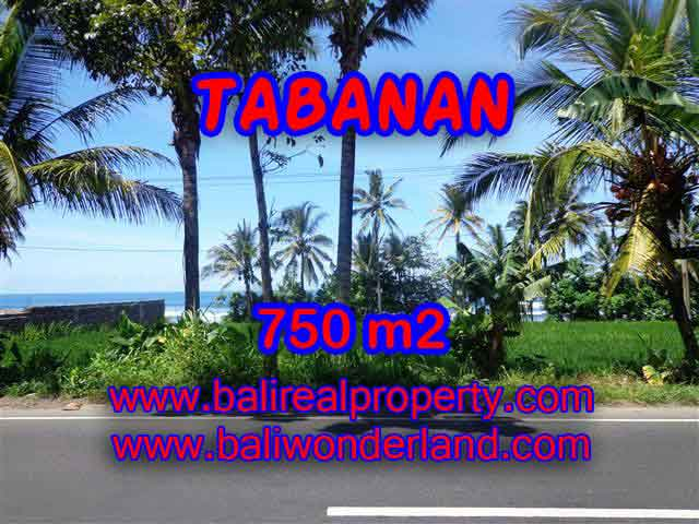 Beautiful Property for sale in Bali, LAND FOR SALE IN TABANAN Bali – TJTB105