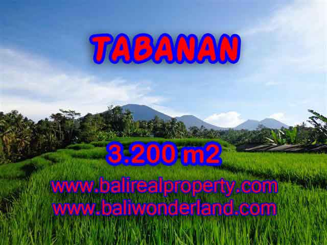 Magnificent Property in Bali for sale, land in Tabanan Bali for sale – TJTB118