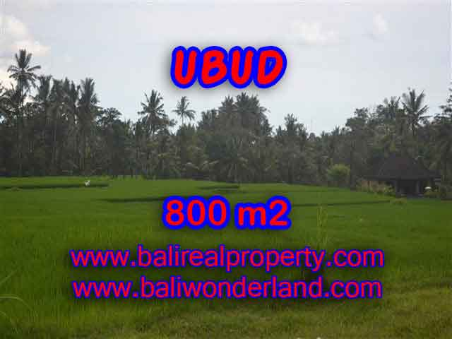 Interesting Land for sale in Ubud Bali, Ricefields view in Ubud Pejeng– TJUB396