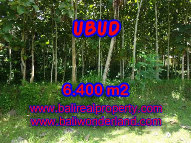 Extraordinary Land for sale in Ubud Bali, Ricefields and Forest view in Ubud Payangan– TJUB401