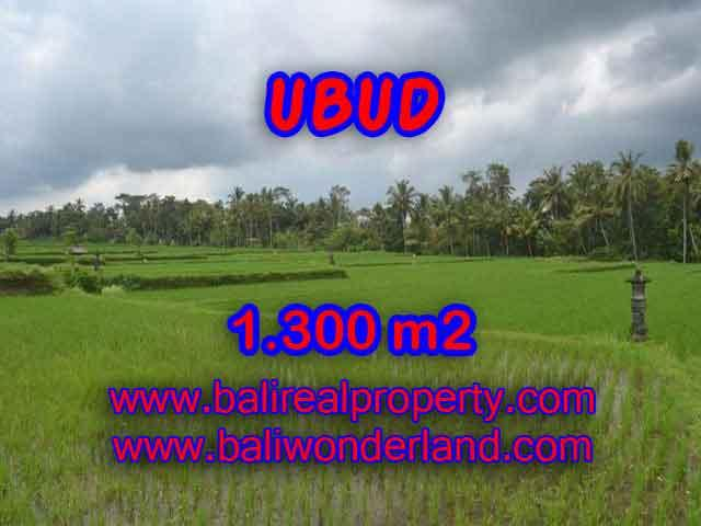 Land in Ubud Bali for sale, Outstanding view in Ubud Pejeng – TJUB394