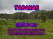 Magnificent Land for sale in Bali, forest and valley view in Bedugul Tabanan Bali – TJTB085