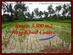 Beautiful PROPERTY UBUD BALI 3,500 m2 LAND FOR SALE TJUB477