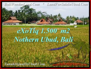 Exotic 1,500 m2 LAND SALE IN UBUD TJUB488