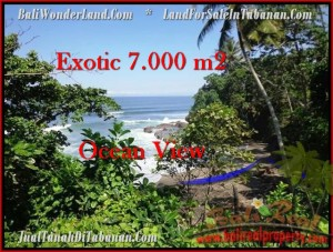 FOR SALE Magnificent 7,000 m2 LAND IN TABANAN TJTB200