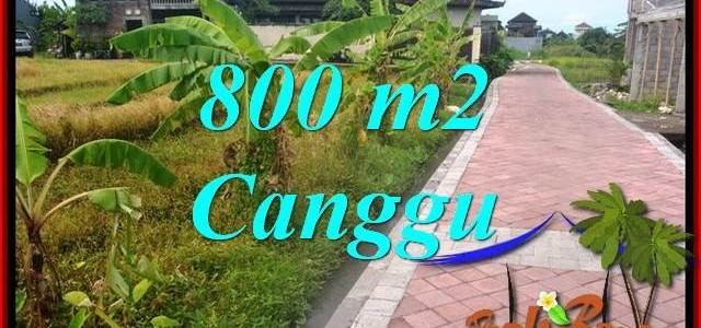Beautiful PROPERTY 800 m2 LAND IN CANGGU BALI FOR SALE TJCG221