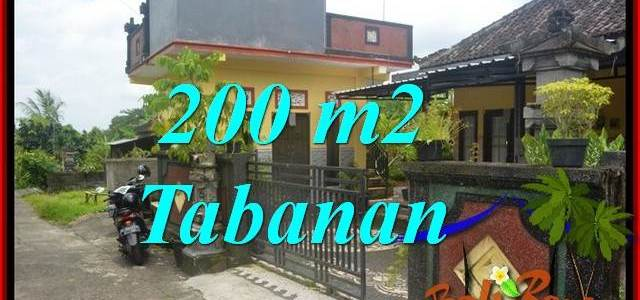 Beautiful PROPERTY LAND SALE IN Tabanan Penebel BALI TJTB359