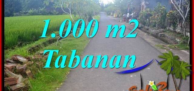 Affordable LAND FOR SALE IN TABANAN TJTB363