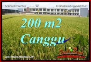 200 m2 LAND SALE IN CANGGU BALI TJCG229