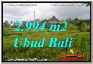 Exotic 2,994 m2 LAND IN SENTRAL UBUD FOR SALE TJUB672
