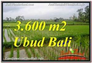 FOR SALE Magnificent LAND IN UBUD TJUB673
