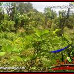 Magnificent PROPERTY 1,200 m2 LAND FOR SALE IN JIMBARAN TJJI128A