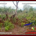 Beautiful PROPERTY 800 m2 LAND FOR SALE IN JIMBARAN TJJI129