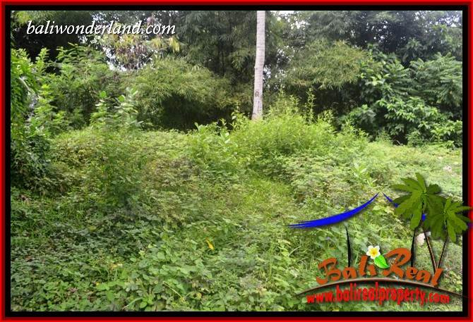 Land for sale in Tabanan TJTB399