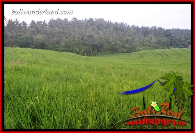 Beautiful Property Tabanan Selemadeg 3,950 m2 Land for sale TJTB402