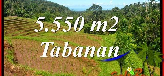 FOR sale Beautiful Property Land in Tabanan TJTB405