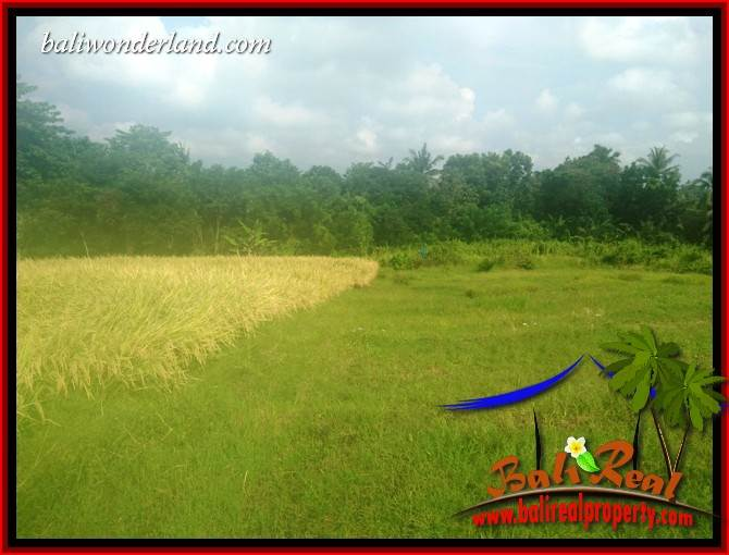 Affordable Land sale in Tabanan Kerambitan Bali TJTB407