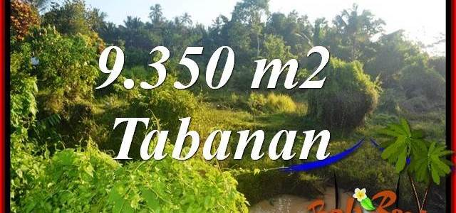 Beautiful Property 9,350 m2 Land sale in Tabanan Selemadeg TJTB409