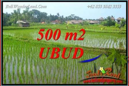 Magnificent Property 500 m2 Land sale in Sentral Ubud TJUB708