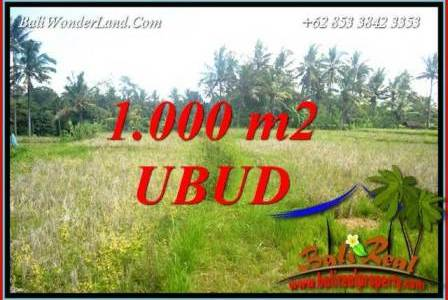 Magnificent Property Land sale in Ubud TJUB727