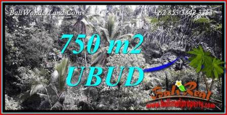 FOR sale Beautiful Land in Ubud TJUB742