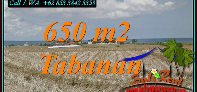 Magnificent 650 m2 LAND IN SELEMADEG TABANAN BALI FOR SALE TJTB453
