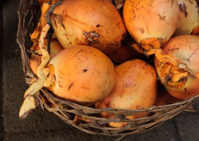 Bali Farm Cooking Photo by Suskitawati (45)