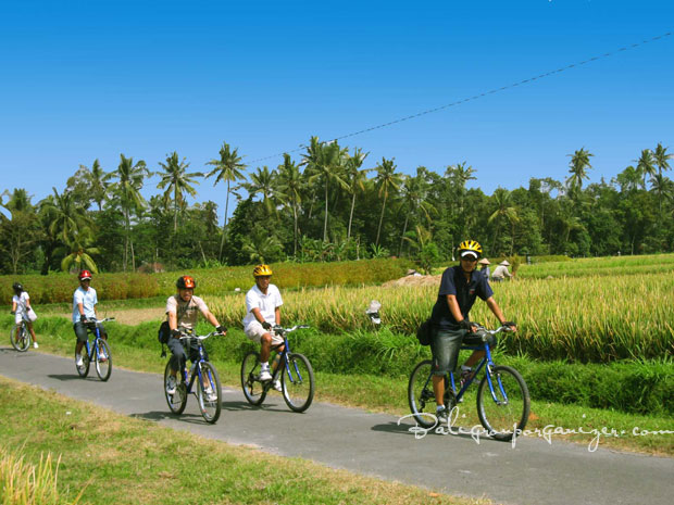Image Result For Bali Group Trips
