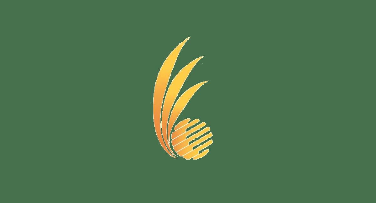 Bali Group Organizer Company Association