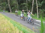 sodexo, indonesia, sodexo indonesia, bali, incentive, tours, bali incentive, incentive tours, bali incentive tours, ubud cycling