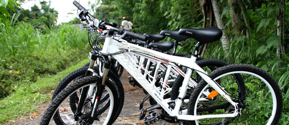 bali hai bike tour bicycles