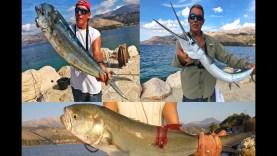 Elias'ın 2017 yılındaki kıyı avları