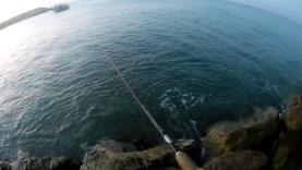 Şamandıralı takımla iki iki levrek avı