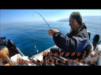 Kırmızı mercan avı