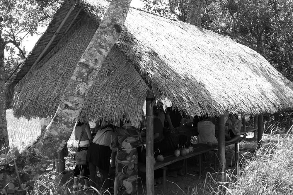 Bali Ancient Tour Bongkasa Village LTP