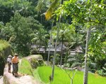 step, down, gunung kawi, bali, gianyar, temples, archaeological sites, places to visit