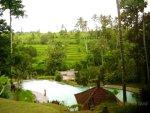 view, penatahan, bali, tabanan, hot spring, penatahan hot spring, bali hot spring, places, places to visit