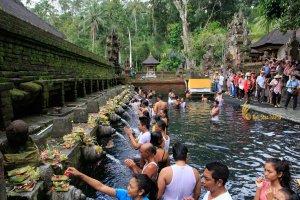pool, tampak siring, bali, holy, water, temple, tampak siring temple, holy spring temple, places of interest